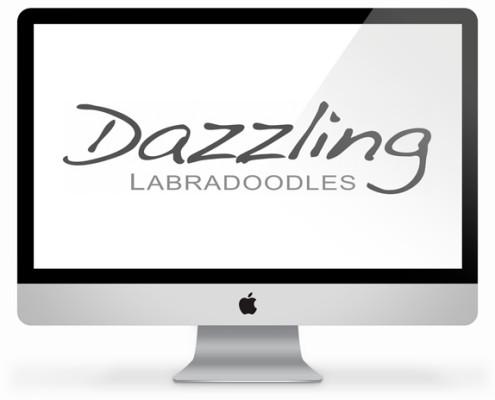 logo-laten-maken-dazzling