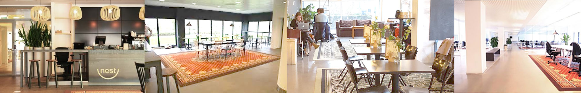 Vacature webdesign Amsterdam
